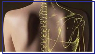 physiotherapy clinics in London with osteopaths and physiotherapists